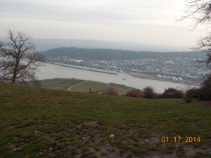 Gazing upon the city of Rudesheim.